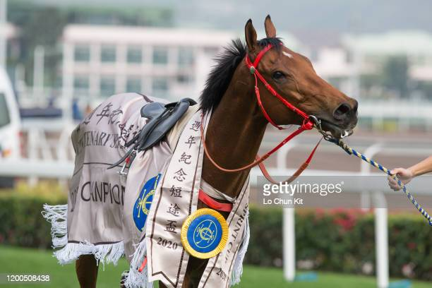 January 19 : Beat The Clock wins Race 7 Centenary Sprint Cup at Sha Tin Racecourse on January 19 , 2020 in Hong Kong.