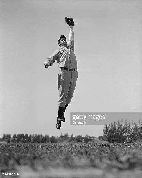 Beating all the rest of the New York Yankee baseball squad to the training camp site here, Joe Dimaggio, the 21 year old Pacific Coast outfielder...