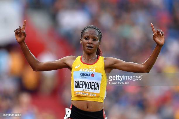 Beatrice Chepkoech of Team Africa celebrates victory following the Womens 3000 Metres Steeplechase during day two of the IAAF Continental Cup at...