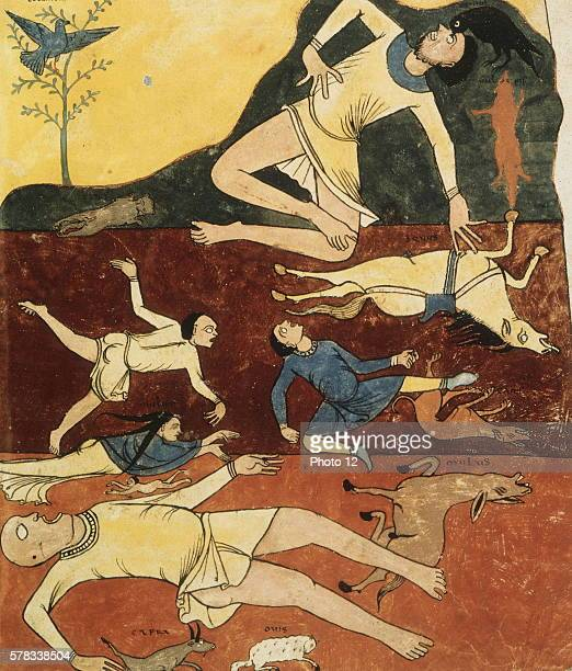 Beatus de Liebana Commentary on the Apocalypse of St Sever fo 85 The Flood a horse a dog a cat a goat a mule a sheep a fox The crow gouging out a...