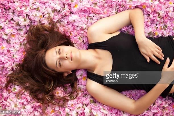 Beaty Lies On Rose Flowers - Roses