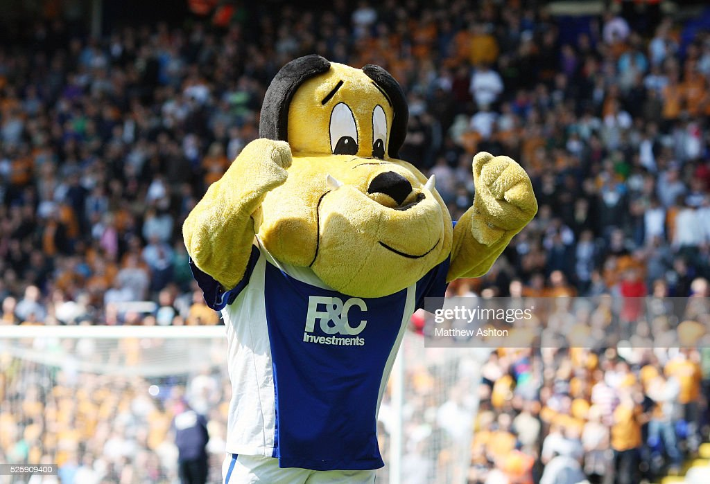 Beau Brummie, the mascot of Birmingham City
