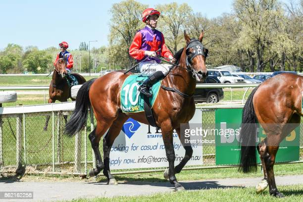 Beau Mertens returns to the mounting yard on Justice Faith after winning Elusive Style Maiden Plate at Kyneton Racecourse on October 17 2017 in...