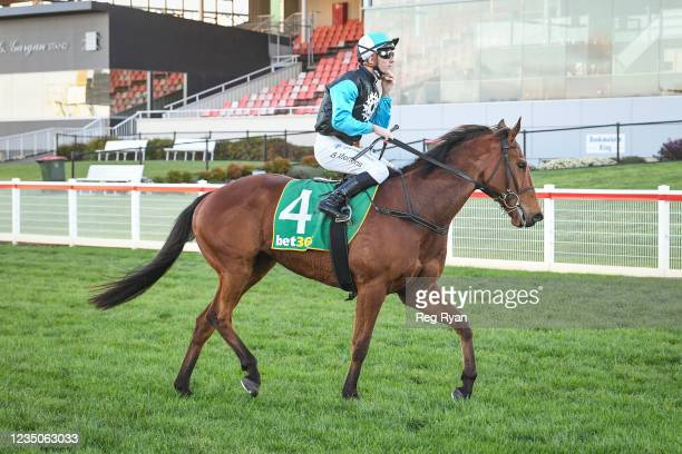 Beau Mertens returns to the mounting yard on Realeza after winning the JT Dixon BM64 Handicap, at Geelong Racecourse on September 05, 2021 in...