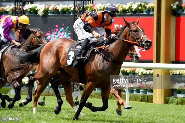 Beau Mertens riding Ample On Offa wins Race 1 during Melbourne Racing at Flemington Racecourse on February 18 2017 in Melbourne Australia