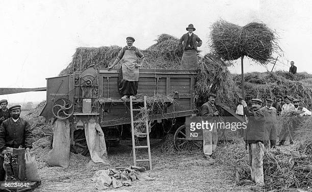 Beauce Threshing about 1900