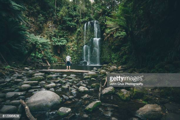 beauchamp falls backpacker - victoria australia stock pictures, royalty-free photos & images