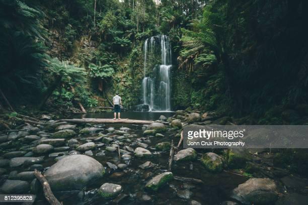 beauchamp falls backpacker - victoria austrália - fotografias e filmes do acervo