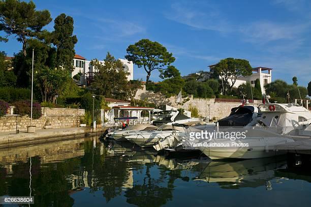 Beaulieu Fourmis, Alpes Maritimes, Provence, France