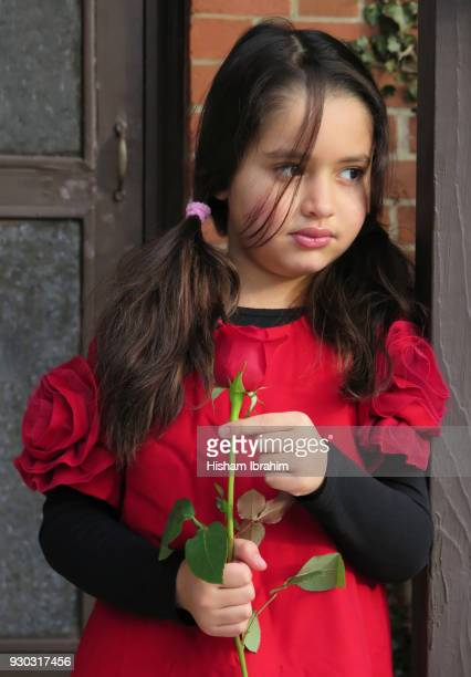 beautiful 5 years old girl holding a single red rose. - 6 7 years stock pictures, royalty-free photos & images