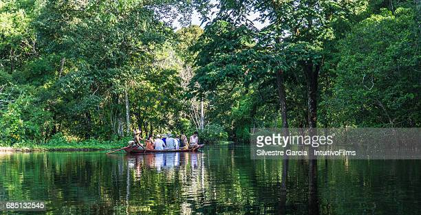 Beautiful amazon river and rainforest