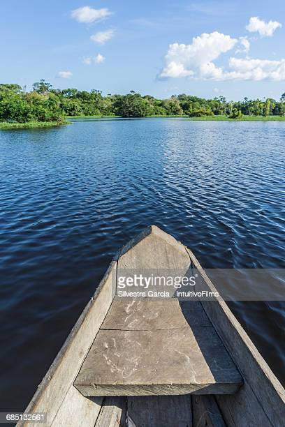 Beautiful amazon river from canoe