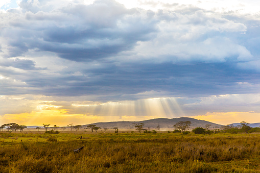 Beautiful and dramatic african landscape 502711392