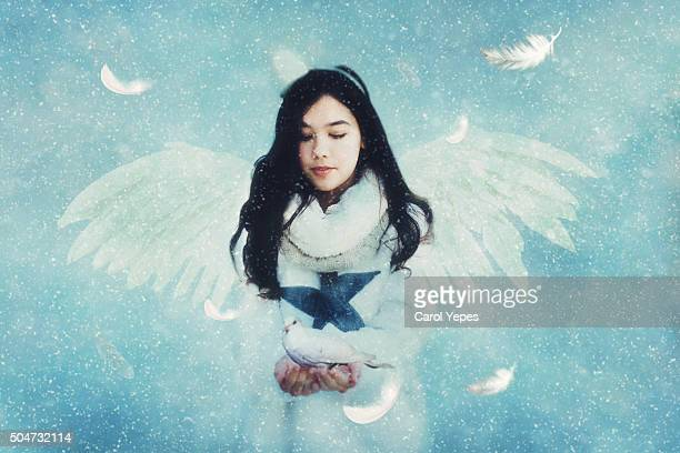 beautiful angel - angel stock pictures, royalty-free photos & images