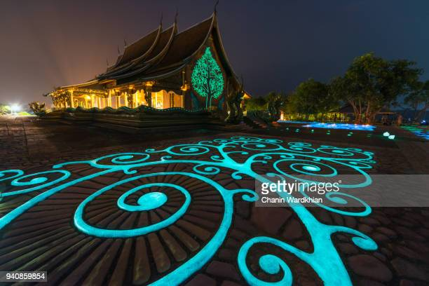 a beautiful art in the night from the phosphorescence - phosphorescence stock pictures, royalty-free photos & images
