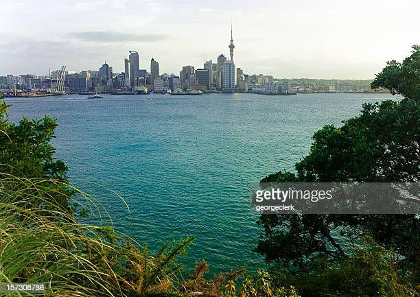 Beautiful Auckland
