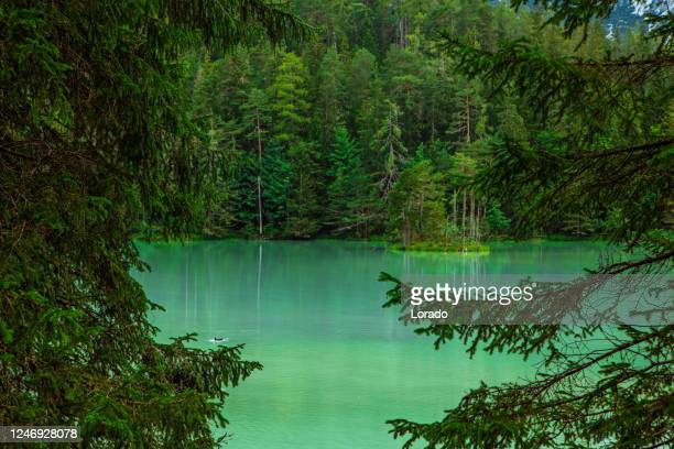 beautiful austrian countryside landscape view of a lake - romantic sunset stock pictures, royalty-free photos & images