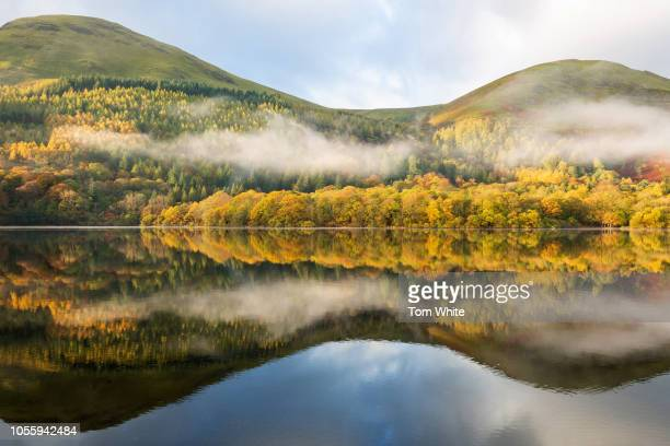 Beautiful autumn colour and low cloud is reflected in Loweswater on November 1 2018 in Loweswater United Kingdom After the long summer colder and...