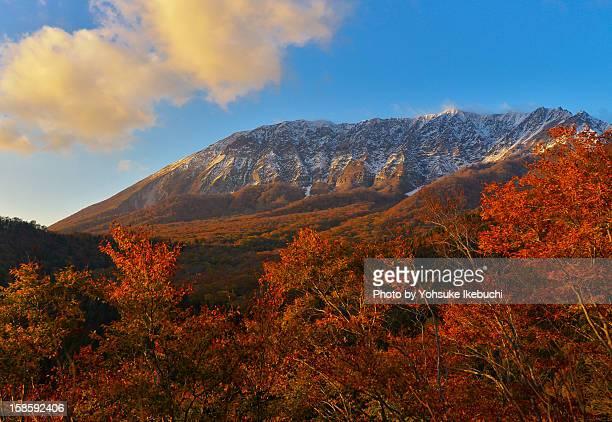 beautiful autumn has come to daisen, tottori - 鳥取県 無人 ストックフォトと画像