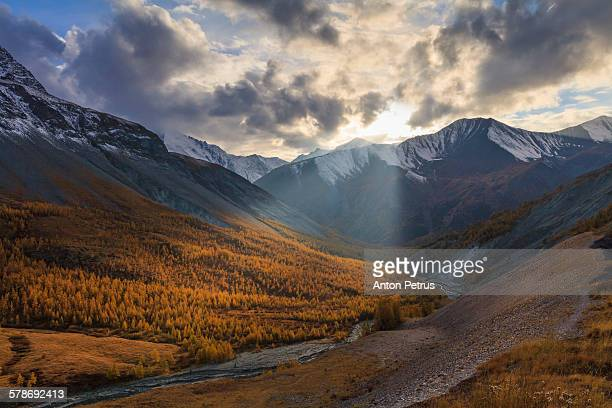 beautiful autumn in the high mountains. - anton petrus stock pictures, royalty-free photos & images