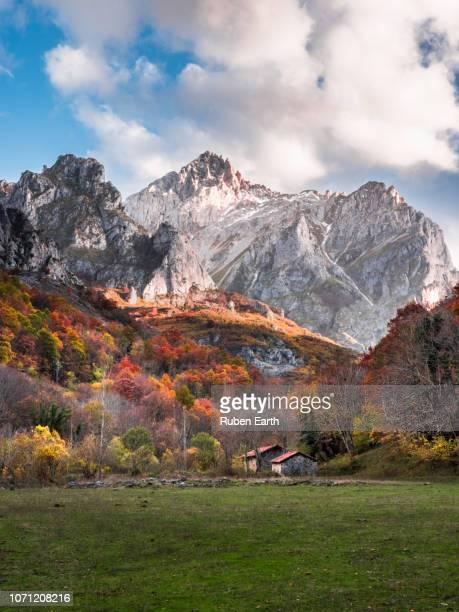 beautiful autumn landscape in the mountains - leon boden stock-fotos und bilder