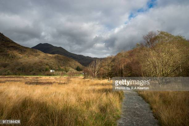 Beautiful autumn landscape near Llyn Dinas, Snowdonia, Wales