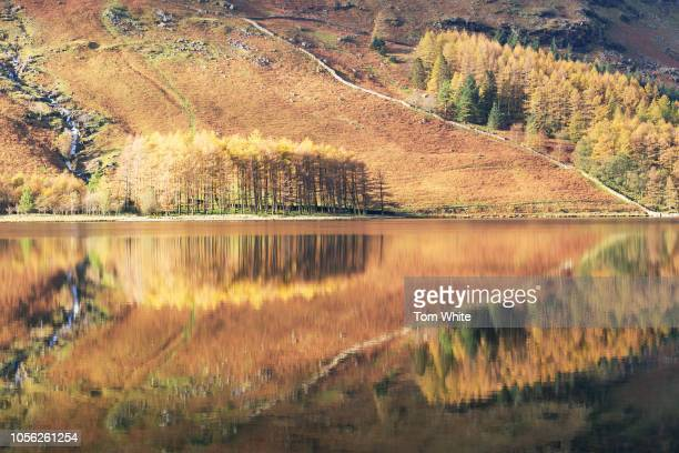 Beautiful autumn reflections at dawn on November 2 2018 in Buttermere United Kingdom After the long summer colder and more wintery weather has now...