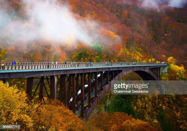 Beautiful Autumn scene in Japan