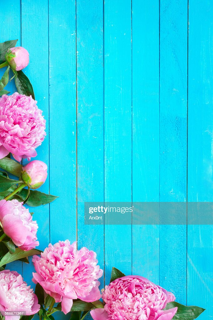 Beautiful background for post cards : Stock Photo