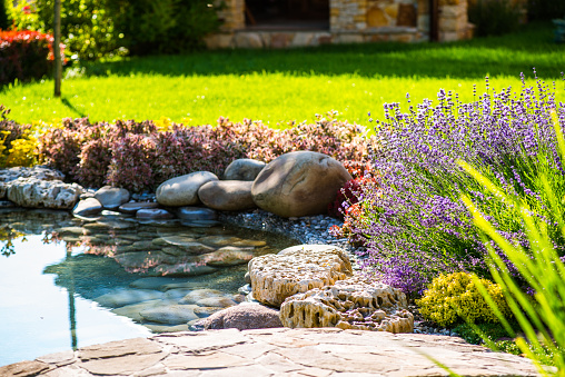 Beautiful backyard landscape design. View of colorful trees and decorative 638448072