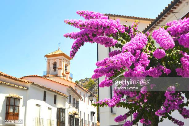 beautiful balconies with typical flowers in grazalema in the sierra de cadiz - cádiz stock pictures, royalty-free photos & images