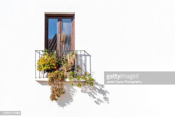 beautiful balcony with typical plants - balcony stock pictures, royalty-free photos & images