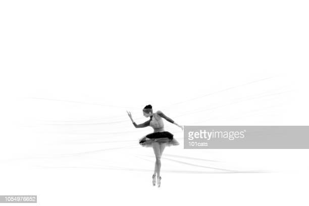 Beautiful ballerina dancing classical ballet behind thin nylon