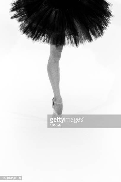 beautiful ballerina dancing in the dream world