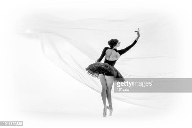 beautiful ballerina is dancing in dream world
