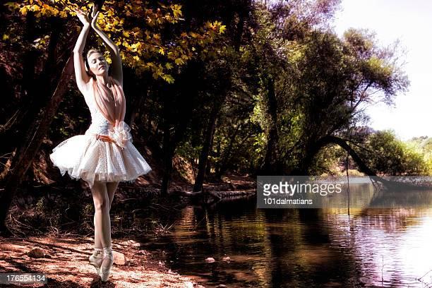 Schöne ballerina in der Nähe von See