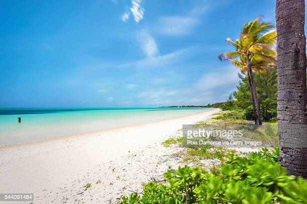 beautiful beach at bahamas, caribbean ocean and idyllic islands in a sunny day - freeport bahamas stock photos and pictures