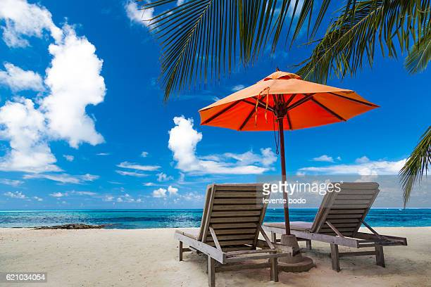 Beautiful beach background for summer travel with sun,coconut tree and beach wooden bed on sand with beautiful blue sea and blue sky. Summer mood sun beach background concept.