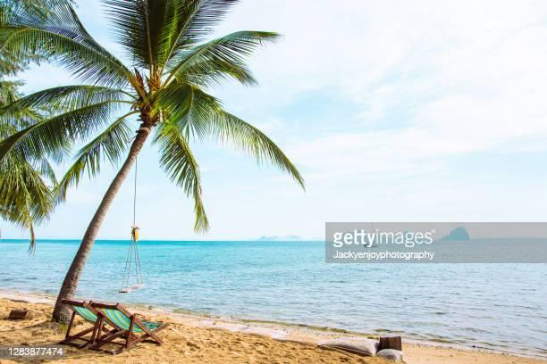 beautiful beach. chairs on the sandy beach near the sea. - ハワイ諸島 ストックフォトと画像