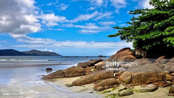 a beautiful beach day - crmacedonio imagens e fotografias de stock