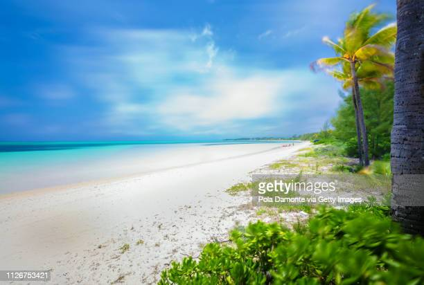 beautiful beach in bahamas, caribbean ocean and idyllic islands in a sunny day - freeport bahamas stock photos and pictures