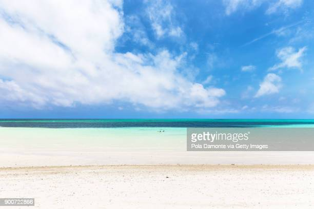 beautiful beach in bahamas, caribbean ocean and idyllic islands in a sunny day - grand bahama stock photos and pictures