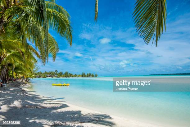 beautiful beach on aitutaki with kayak - isole cook foto e immagini stock