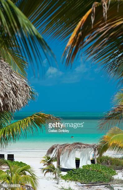 Beautiful beach + palapa on Holbox Island, Mexico