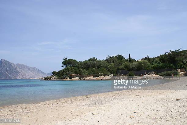 beautiful beach - massa stock pictures, royalty-free photos & images