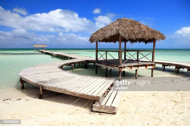 beautiful beach - jetty stock pictures, royalty-free photos & images