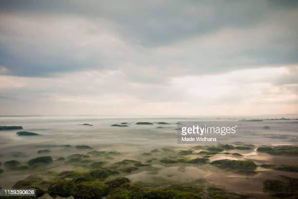 beautiful beach rocks on coastline - made widhana stock photos and pictures