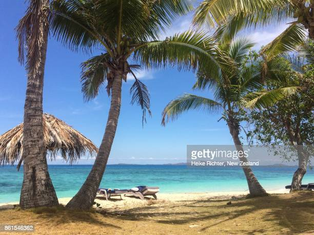 beautiful beach with coconut palm trees, fiji - western division fiji stock photos and pictures