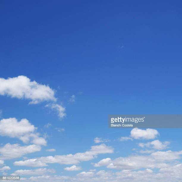 beautiful blue sky on a clear day - wolkenloser himmel stock-fotos und bilder