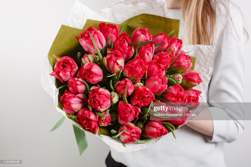Beautiful Bouquet Crimson Tulip With In Woman Hand